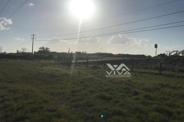 Foto de rancho en venta en carretera federal 186 chetumal - villahermosa 186, pital nuevo, carmen, campeche, 7197015 No. 07