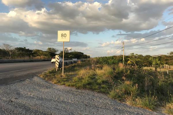 Foto de rancho en venta en carretera federal 186 chetumal - villahermosa 186, pital nuevo, carmen, campeche, 7197015 No. 10