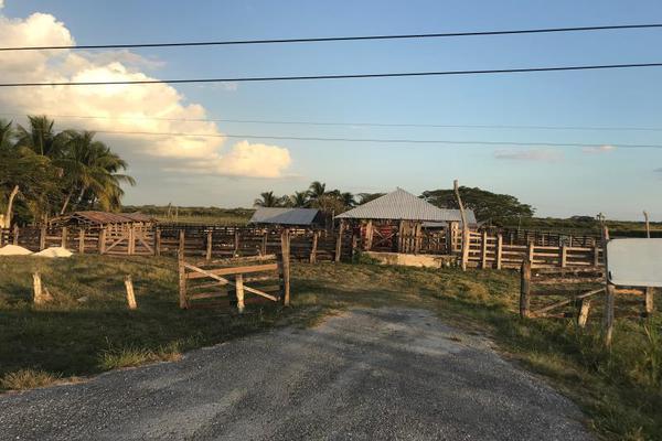 Foto de rancho en venta en carretera federal 186 chetumal - villahermosa 186, pital nuevo, carmen, campeche, 7197015 No. 11