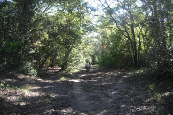 Foto de rancho en venta en carretera federal 186 chetumal - villahermosa 186, pital nuevo, carmen, campeche, 7197015 No. 12