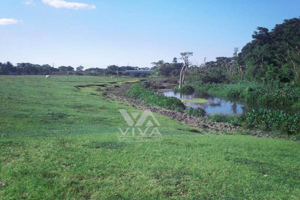 Foto de rancho en venta en carretera federal 186 chetumal - villahermosa 186, pital nuevo, carmen, campeche, 7197015 No. 15