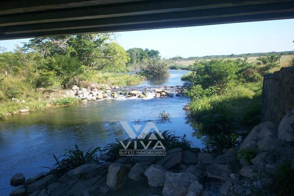 Foto de rancho en venta en carretera federal 186 chetumal - villahermosa 186, pital nuevo, carmen, campeche, 7197015 No. 17