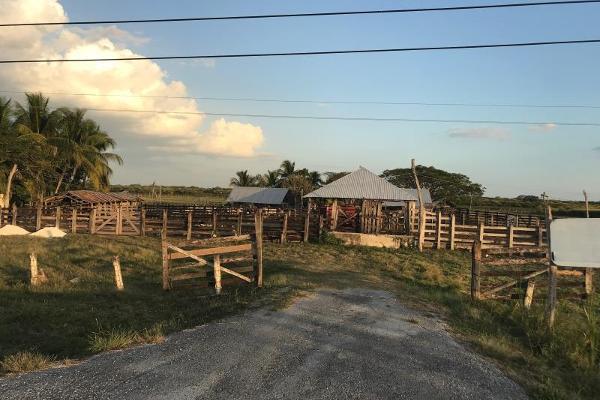 Foto de terreno habitacional en venta en carretera federal 186, entre mamantel y nuevo pital. a sólo 34 kilometro de escárcega. 186, cereso cd. del carmen, carmen, campeche, 7197015 No. 11
