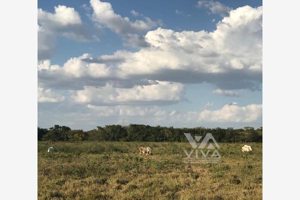 Foto de terreno habitacional en venta en carretera federal 186, entre mamantel y nuevo pital. a sólo 34 kilometro de escárcega. 186, cereso cd. del carmen, carmen, campeche, 7197015 No. 05