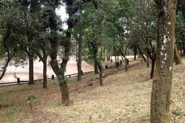 Foto de rancho en venta en carretera federal a cuernavaca , 3 marías o 3 cumbres, huitzilac, morelos, 3454616 No. 12