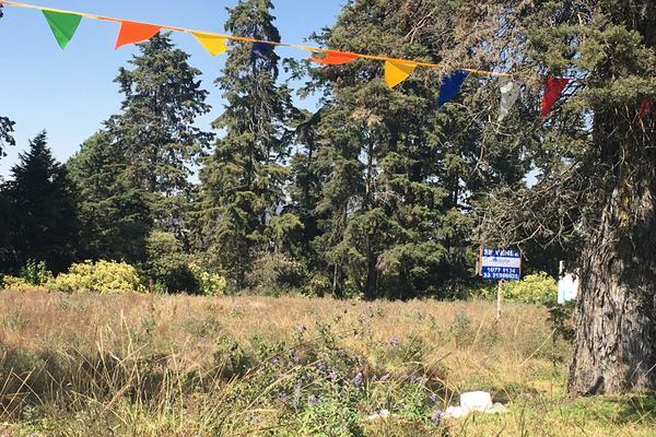 Foto de terreno comercial en venta en carretera federal cuatla-méxico , ozumba de alzate, ozumba, méxico, 12640717 No. 11