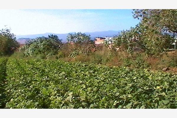 Foto de terreno industrial en venta en carretera federal cuautla-mexico 87, el mirador, atlatlahucan, morelos, 5391270 No. 13