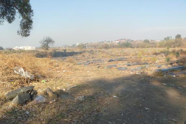 Foto de terreno industrial en venta en carretera federal cuautla-mexico 87, el mirador, atlatlahucan, morelos, 5391270 No. 07