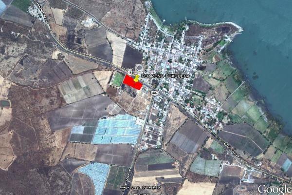 Foto de terreno comercial en venta en carretera federal guadalajara morelia , san luis soyatlan, tuxcueca, jalisco, 4646057 No. 02