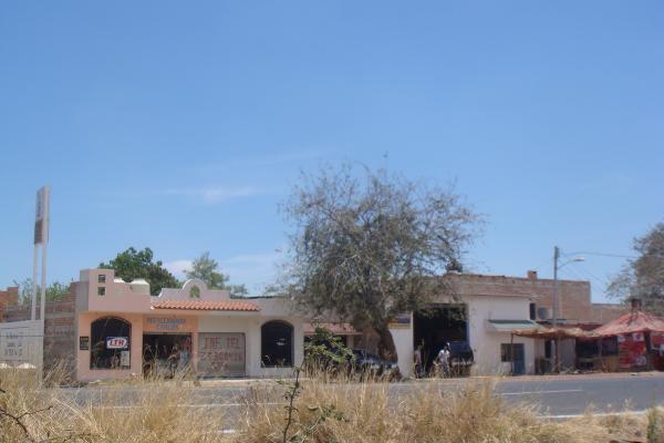 Foto de terreno comercial en venta en carretera federal guadalajara morelia , san luis soyatlan, tuxcueca, jalisco, 4646057 No. 10