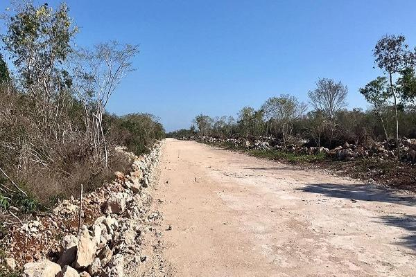 Foto de terreno habitacional en venta en carretera federal mérida - tizimín , muxupip, muxupip, yucatán, 5440385 No. 27