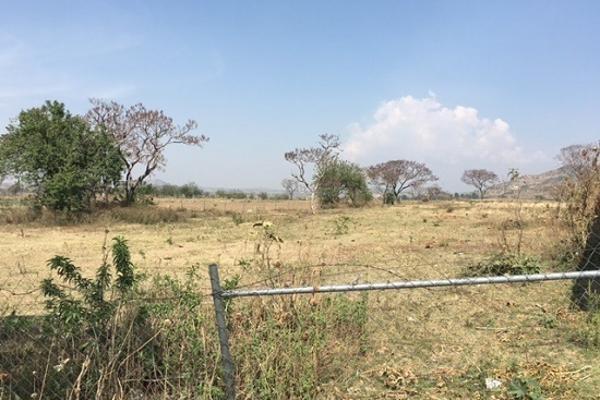 Foto de terreno comercial en venta en carretera federal puebla, atlíxco , santa ana acozautla, santa isabel cholula, puebla, 5342546 No. 01