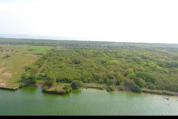 Foto de terreno comercial en venta en carretera federal tampico-tuxpan , anáhuac, pueblo viejo, veracruz de ignacio de la llave, 8323272 No. 01