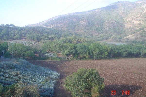 Foto de terreno habitacional en venta en carretera gdl-tepic , amatitan, amatitán, jalisco, 6199990 No. 02