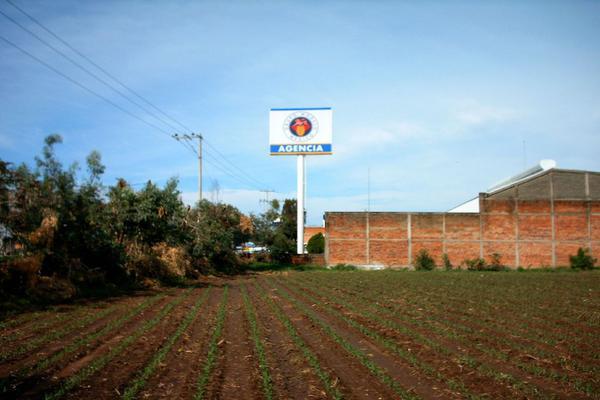 Foto de terreno comercial en venta en carretera guadalajara-saltillo , ixtlahuacan del rio, ixtlahuacán del río, jalisco, 12764316 No. 02