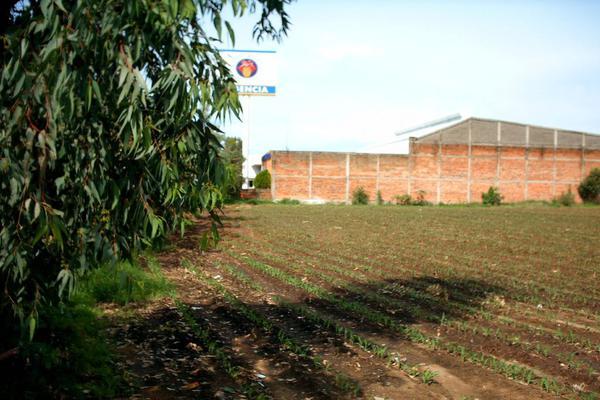 Foto de terreno comercial en venta en carretera guadalajara-saltillo , ixtlahuacan del rio, ixtlahuacán del río, jalisco, 12764316 No. 03