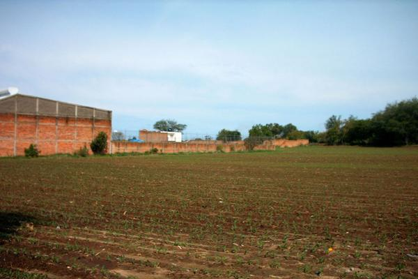 Foto de terreno comercial en venta en carretera guadalajara-saltillo , ixtlahuacan del rio, ixtlahuacán del río, jalisco, 12764316 No. 04
