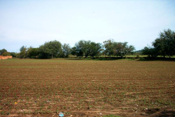 Foto de terreno comercial en venta en carretera guadalajara-saltillo , ixtlahuacan del rio, ixtlahuacán del río, jalisco, 12764316 No. 05