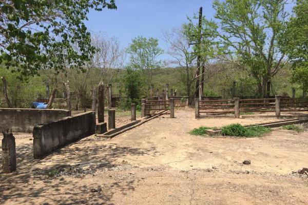 Foto de terreno comercial en venta en carretera hacia el quemado 0, el quelite, mazatlán, sinaloa, 5777245 No. 06