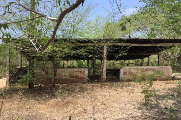 Foto de terreno comercial en venta en carretera hacia el quemado 0, el quelite, mazatlán, sinaloa, 5777245 No. 07