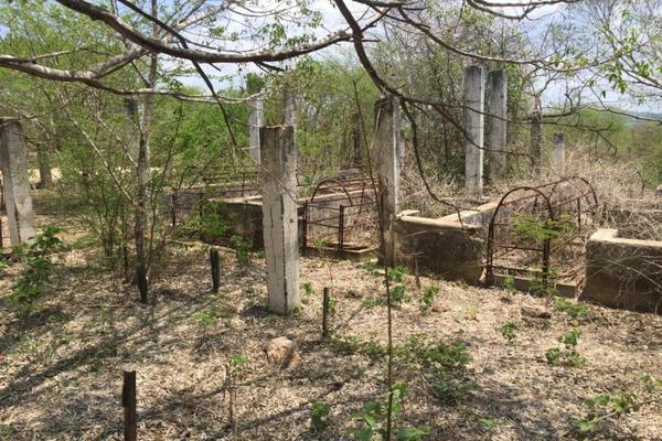 Foto de terreno comercial en venta en carretera hacia el quemado 0, el quelite, mazatlán, sinaloa, 5777245 No. 10