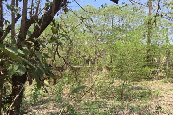 Foto de terreno comercial en venta en carretera hacia el quemado 0, el quelite, mazatlán, sinaloa, 5777245 No. 12