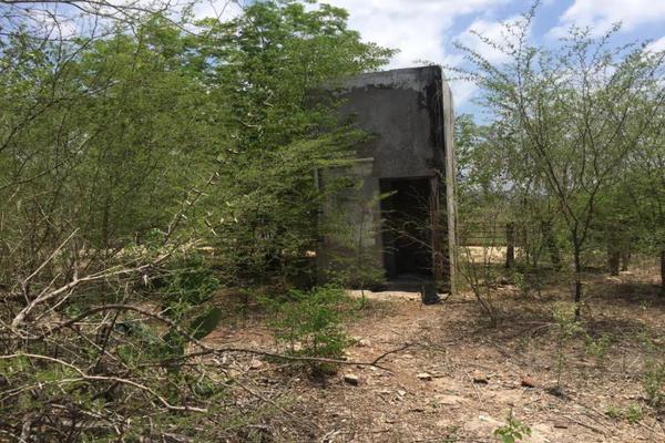 Foto de terreno comercial en venta en carretera hacia el quemado 0, el quelite, mazatlán, sinaloa, 5777245 No. 14