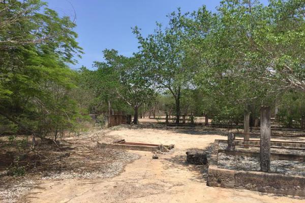 Foto de terreno comercial en venta en carretera hacia el quemado 0, el quelite, mazatlán, sinaloa, 5777245 No. 16