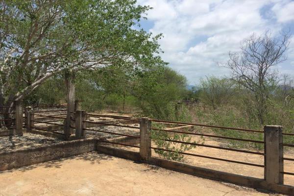 Foto de terreno comercial en venta en carretera hacia el quemado 0, el quelite, mazatlán, sinaloa, 5777245 No. 17