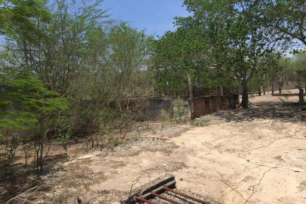 Foto de terreno comercial en venta en carretera hacia el quemado 0, el quelite, mazatlán, sinaloa, 5777245 No. 18