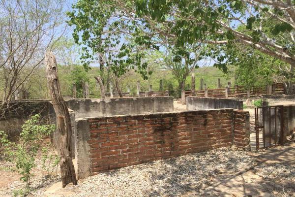 Foto de terreno comercial en venta en carretera hacia el quemado 0, el quelite, mazatlán, sinaloa, 5777245 No. 22