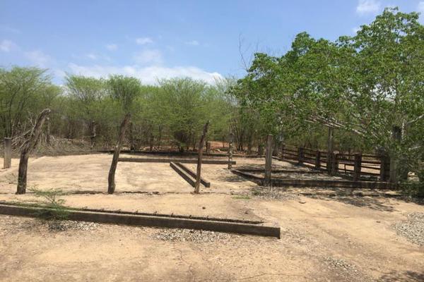 Foto de terreno comercial en venta en carretera hacia el quemado 0, el quelite, mazatlán, sinaloa, 5777245 No. 23