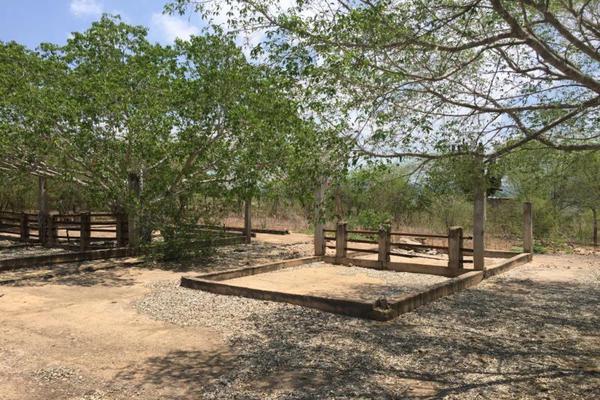 Foto de terreno comercial en venta en carretera hacia el quemado 0, el quelite, mazatlán, sinaloa, 5777245 No. 24