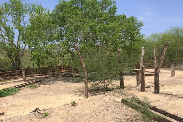 Foto de terreno comercial en venta en carretera hacia el quemado 0, el quelite, mazatlán, sinaloa, 5777245 No. 25