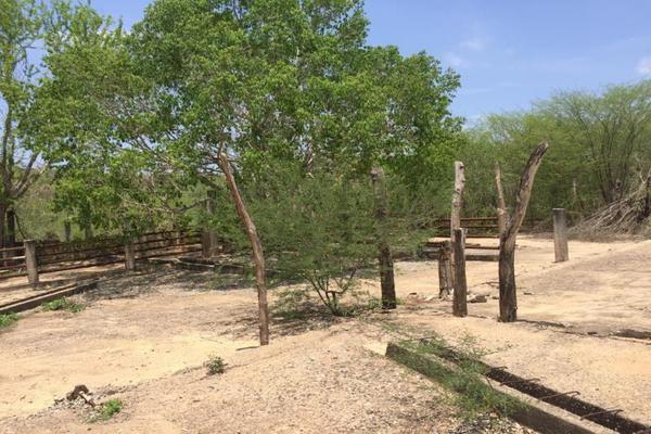 Foto de terreno comercial en venta en carretera hacia el quemado 0, el quelite, mazatlán, sinaloa, 5777245 No. 26