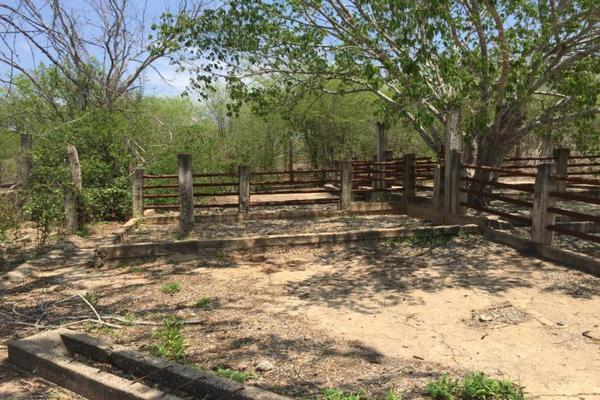 Foto de terreno comercial en venta en carretera hacia el quemado 0, el quelite, mazatlán, sinaloa, 5777245 No. 35