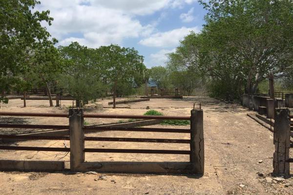 Foto de terreno comercial en venta en carretera hacia el quemado 0, el quelite, mazatlán, sinaloa, 5777245 No. 37