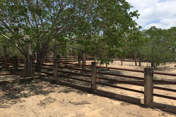 Foto de terreno comercial en venta en carretera hacia el quemado 0, el quelite, mazatlán, sinaloa, 5777245 No. 38