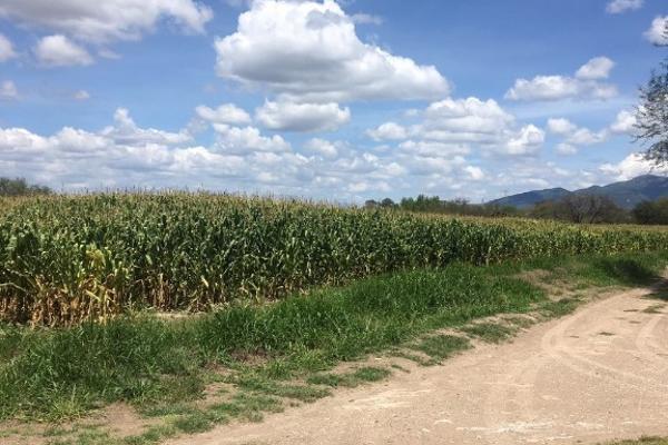Foto de terreno habitacional en venta en carretera humilpan kilometro 17 s/n , lagunillas, huimilpan, querétaro, 12810433 No. 01