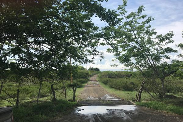 Foto de terreno habitacional en renta en carretera interior el chocolate km2 , villas de altamira, altamira, tamaulipas, 7564106 No. 03