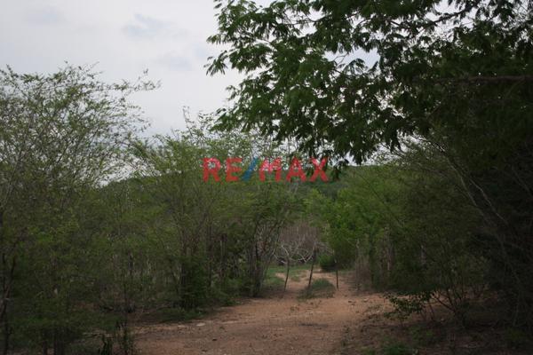 Foto de terreno comercial en venta en carretera internacional 15 , agua caliente de garate, concordia, sinaloa, 5641495 No. 04