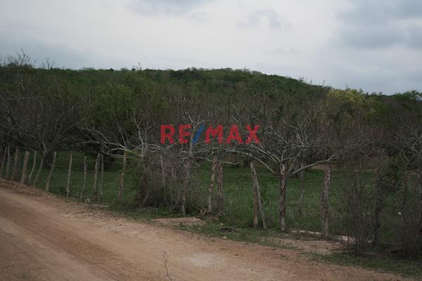 Foto de terreno comercial en venta en carretera internacional 15 , agua caliente de garate, concordia, sinaloa, 5641495 No. 05