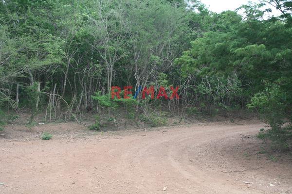 Foto de terreno comercial en venta en carretera internacional 15 , agua caliente de garate, concordia, sinaloa, 5641495 No. 06