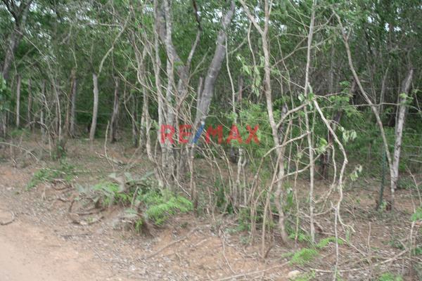 Foto de terreno comercial en venta en carretera internacional 15 , agua caliente de garate, concordia, sinaloa, 5641495 No. 07