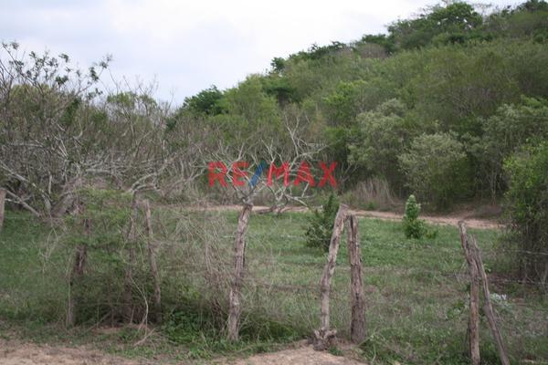 Foto de terreno comercial en venta en carretera internacional 15 , agua caliente de garate, concordia, sinaloa, 5641495 No. 08