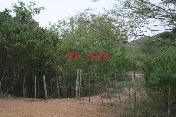 Foto de terreno comercial en venta en carretera internacional 15 , agua caliente de garate, concordia, sinaloa, 5641495 No. 09