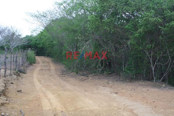 Foto de terreno comercial en venta en carretera internacional 15 , agua caliente de garate, concordia, sinaloa, 5641495 No. 10