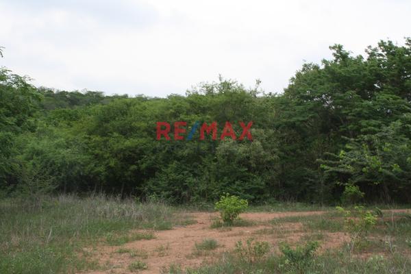 Foto de terreno comercial en venta en carretera internacional 15 , agua caliente de garate, concordia, sinaloa, 5641495 No. 12