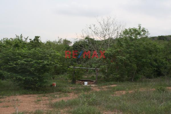 Foto de terreno comercial en venta en carretera internacional 15 , agua caliente de garate, concordia, sinaloa, 5641495 No. 13