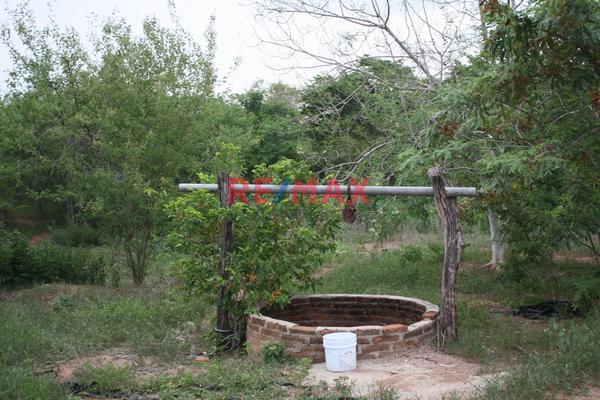 Foto de terreno comercial en venta en carretera internacional 15 , agua caliente de garate, concordia, sinaloa, 5641495 No. 14